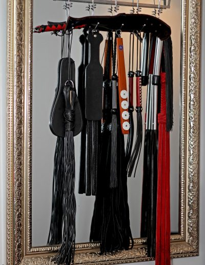 Mistress Wildfire BDSM equipment